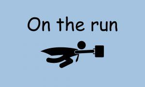 Vellykket on the run
